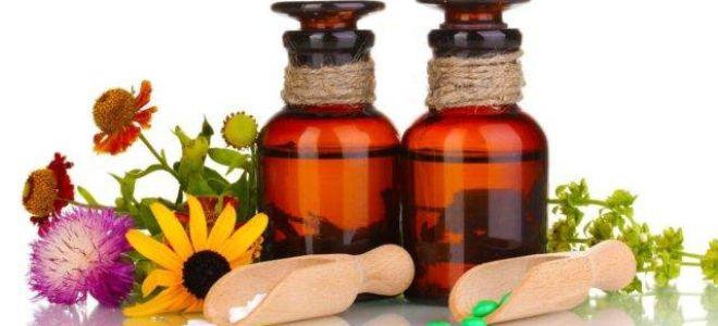 Гомеопатия от насморка: в чем польза такого лечения, популярные препараты и их эффективность