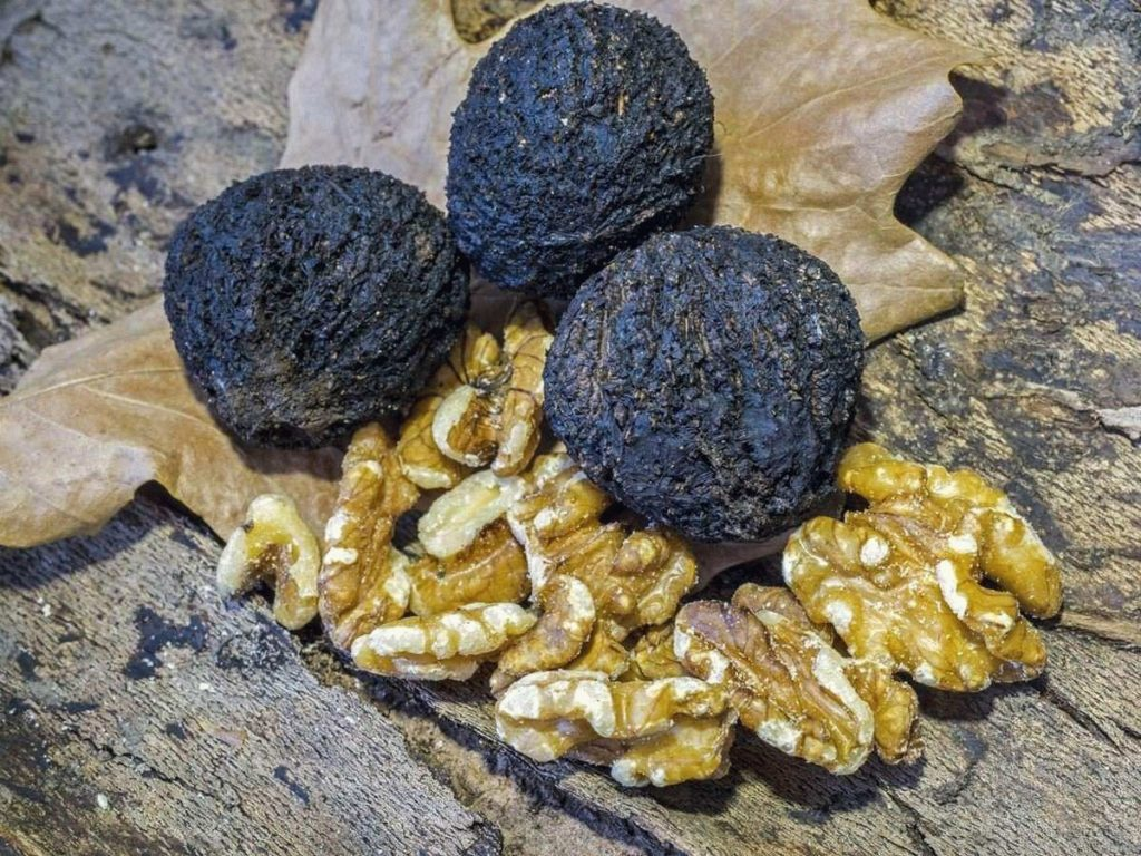 Чёрный орех от папиллом