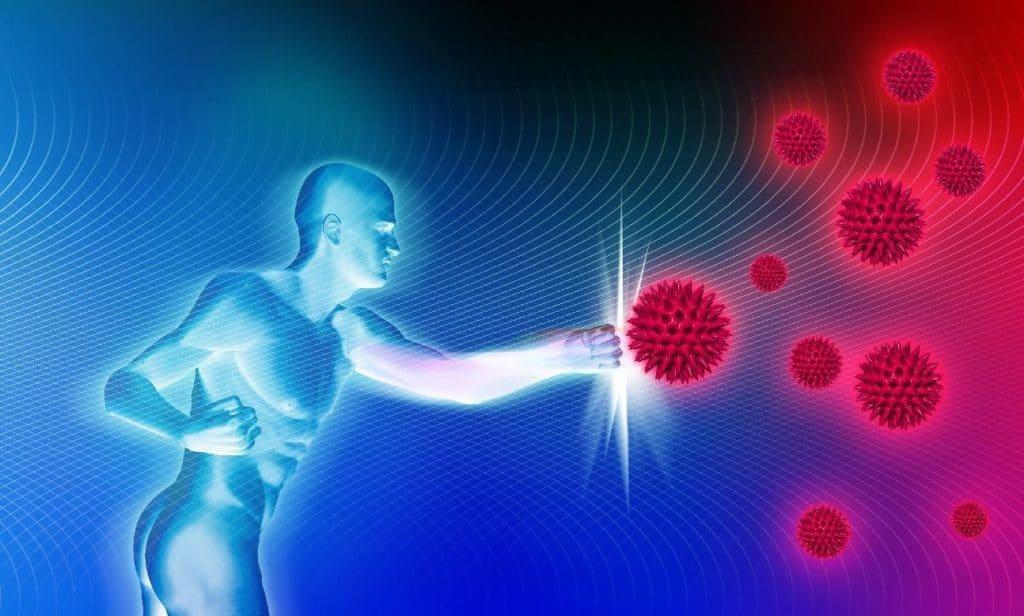 Укрепление иммунитета пр лечении папиллом