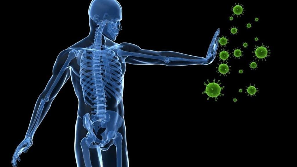 Папилломы при ослаблении иммунитета